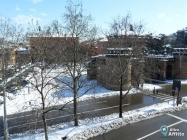 Appartamento Bilocale a Bologna in affitto privato - 55mq