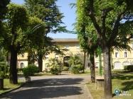 Appartamento Bilocale a Roma in affitto privato - 38mq