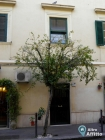 Appartamento Monolocale a Roma (2)