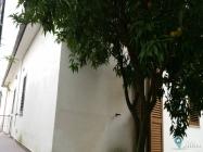 Appartamento 7 stanze a Santi Cosma e Damiano (20)
